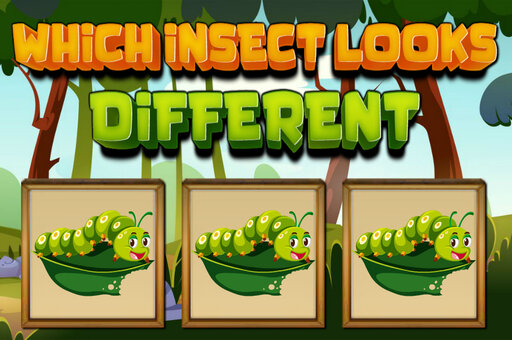 Which Insect Looks Different